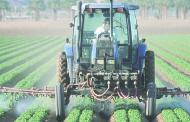 Pesticides : aux fous !