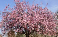 Le printemps s'annonce chaud, chaud, chaud !