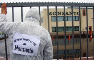 Glyphosate : la Commission donne raison au lobby agro-chimique