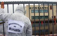 Glyphosate : la Commission donne raison au lobby agro-chimique