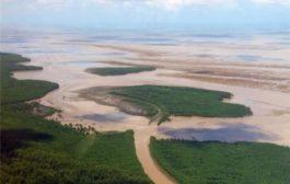 Question écrite :  taux de mercure sur le littoral guyanais