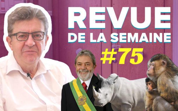 Revue de la semaine #75 - Brésil, perquisitions, biodiversité