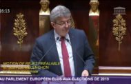 VIDÉO - La grande coalition LREM-EELV-PS-LR en Europe, c'est la fin de la démocratie politique