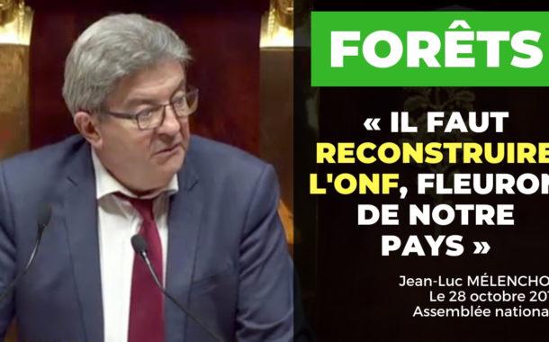 VIDÉO - Forêts : il faut reconstruire l'ONF, fleuron de notre pays!