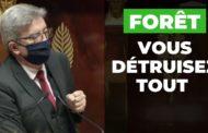 VIDÉO - Forêt : vous détruisez tout en démantelant l'État !