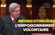 VIDÉO - Néonicotinoïdes : l'empoisonnement volontaire