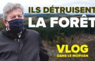 VLOG - Ils détruisent la forêt