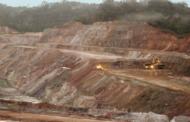 Question écrite : mine d'or en Guyane