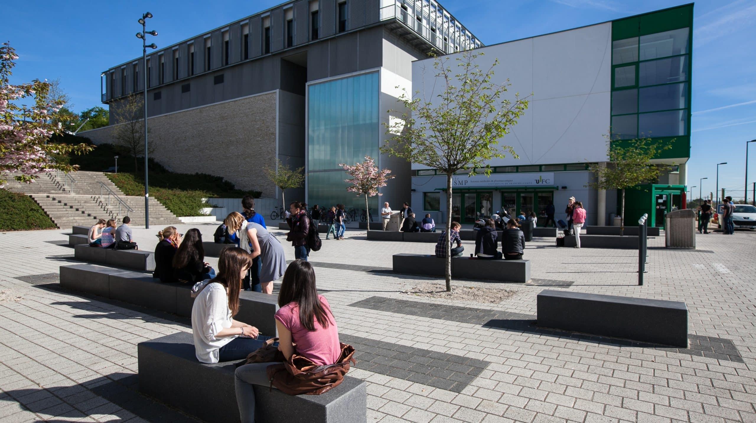 Intégrer la bifurcation écologique dans les programmes universitaires